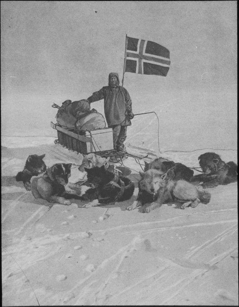 Sledge dogs at the South Pole